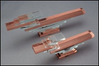 Southwestern Copper & Clear Roadrunners